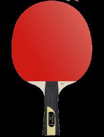 Ракетка для настольного тенниса STIGA Sublime