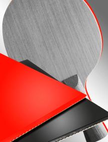 Настольный теннис:  наклейка накладки