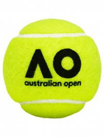 Теннисные мячи Dunlop Australian Open x4