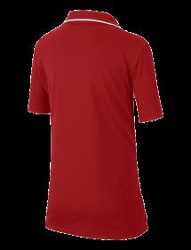 Поло Nike Court Dri-FIT B (Бордовый)