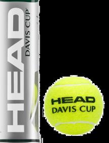 Теннисные мячи Head Davis Cup 72 (18x4)